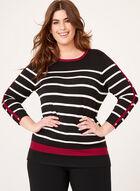 Crew Neck Stripe Print Sweater, Black, hi-res